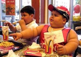 Fat Kidz